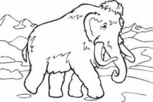 Mammut-Blog